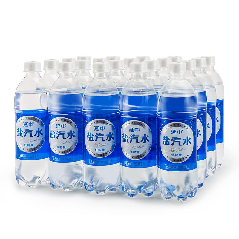 延中YZYQS600ml盐汽水600ml/24瓶/箱